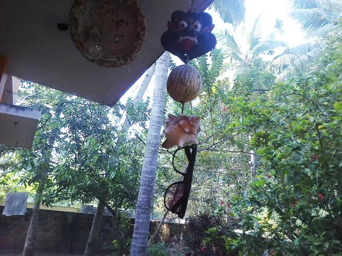 Очки, ракушка, кокос и маска
