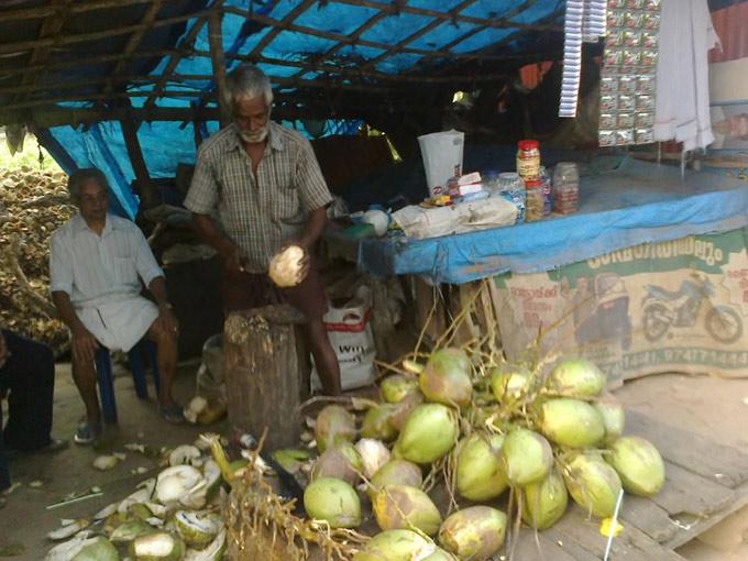 Кокосы у Вишванатха