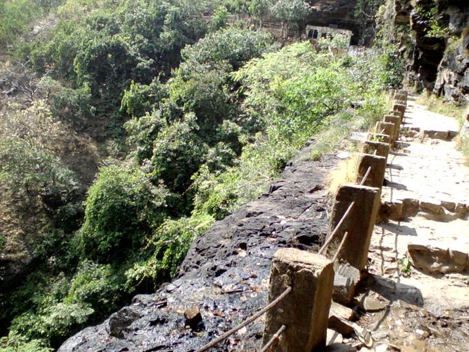 Прогулки по диким джунглям Индии.