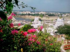 Вид на город Калахасти с высоты птичьего полета