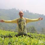 Чайные плантации Муннара.