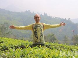 Я и Чайные плантации Муннара